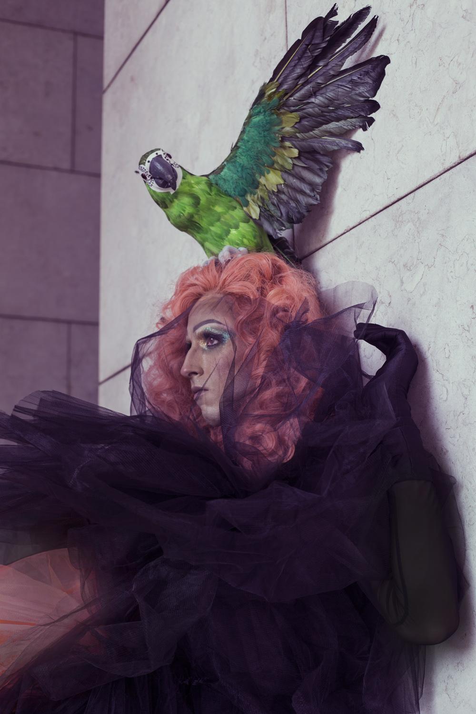jaime para metamorfosis hos davines lisboa hair on stage cabello color fantasía naranja salmón con tocado de loro